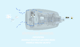 Copy of SÍNTESIS DE BIODIESEL