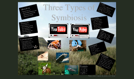 Copy of The 3 Types of Symbiosis by Mariah Adkins 1st hour