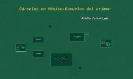 Cárceles en México:Escuelas del crimen