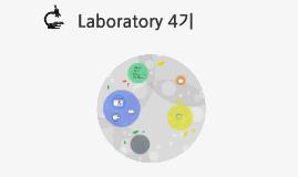 Laboratory 4기