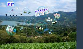 Fertilizantes: Índice de Eficiencia Hidrológica Necaxa