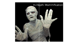 Explore a Mummy