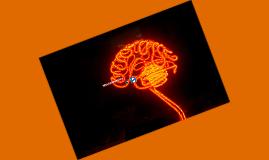 X3030: Neuroimaging