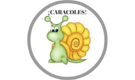 CARACOLES!!!