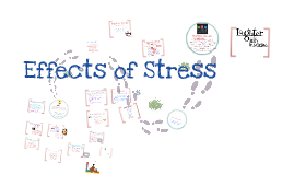 Copy of Effects of Stress