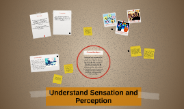 Understand Sensation and Perception