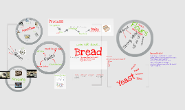 Copy of Bread revision Kings