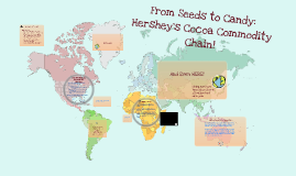 From Seeds to Candy: Hershey's Cocoa Commodity Chain