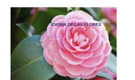 IDIOMA DE LAS FLORES