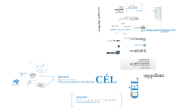 Copy of Jamska  - Cebion