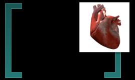 circulatory syatem