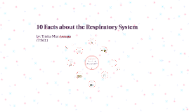 10 Facts about the Respiratory System