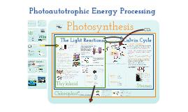 Metabolism 3:  Photoautotrophic Nutrition
