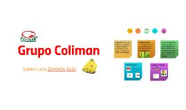 Grupo Coliman