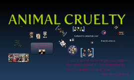 Copy of Animal Cruelty