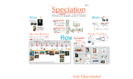 Chapter 24: Speciation