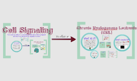 Copy of Cell Signaling and CML