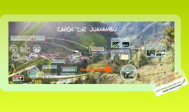 Copy of Ordenamiento y planificación turística Juntas