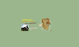EL PROBLEMA DE LA MIGRACION EN BOLIVIA