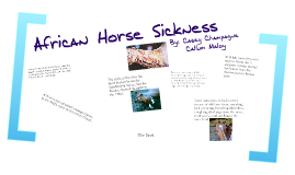 Copy of African Horse Sickness