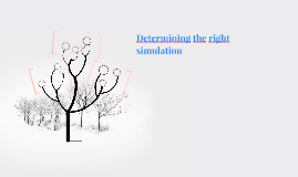 Determining the right simulation
