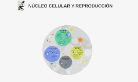 Copy of NÚCLEO CELULAR Y REPRODUCCIÓN