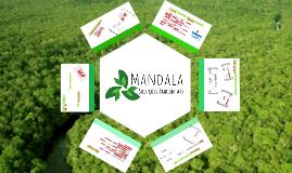Mandala - Apresentação