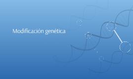 Modificación genética