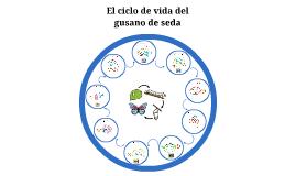 El Ciclo de vida del gusano de seda