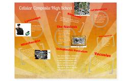 Celluar Composite School