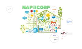 Ideas NAPTICORP