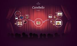 Copy of Cerebelo