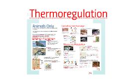 AP Bio-Thermoregulation