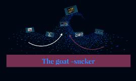 The goat -sucker