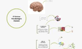 El Sistema Psicobiológico Humano
