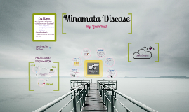 Copy of Minamata Disease