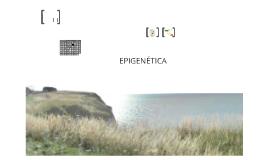 Copy of Epigenética