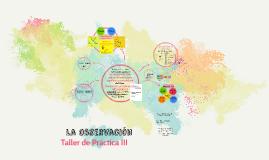 Copy of La Observacion: educar la mirada para resignificar la comple