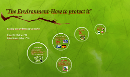 The Environment-How to protect