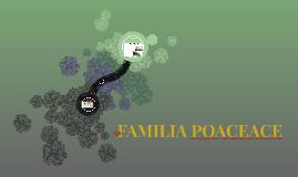 POACEACE