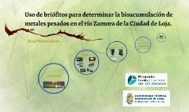 Uso de briófitos para determinar la bioacumulación de metales pesados en el rio Zamora-Ciudad de Loja-Ecuador