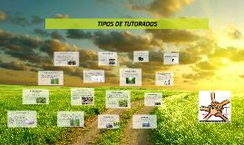 Copy of TIPOS DE TUTORADOS