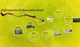 Deforestación del Amazonia: Brasil