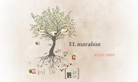 EL MARAÑON
