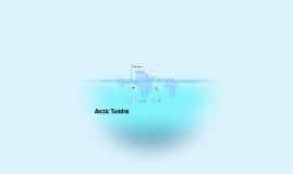 Copy of Arctic Tundra