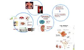 Fisiopatologia de las nefropatías cronicas