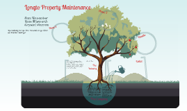 Longto Tree Removal