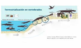 Copy of Terrestrialización