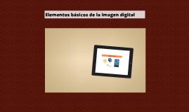 Elementos básicos de la imagen digital