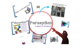 Copy of PERCEPTION